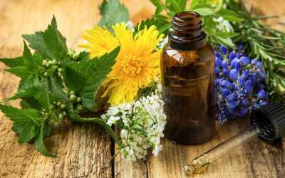 Plant-based Medicine