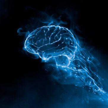 La découverte d'une molécule capable de réguler la perte de mémoire représente un espoir dans la prise en charge de la maladie d'Alzheimer