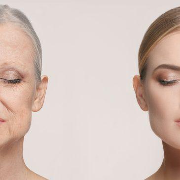 Longévité et télomères