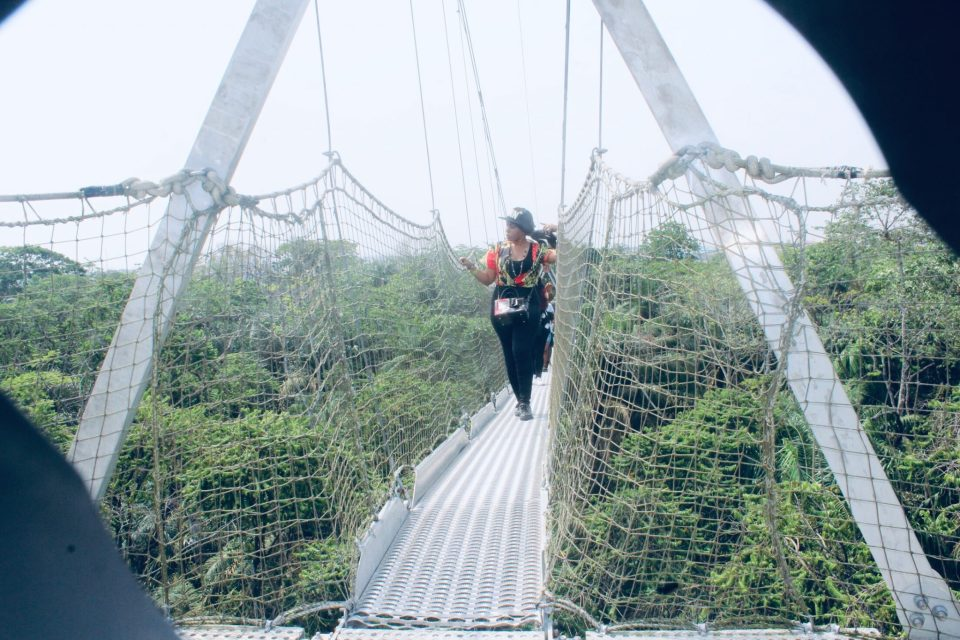 Lekki Conservation Centre Longest Canopy Walkway Africa