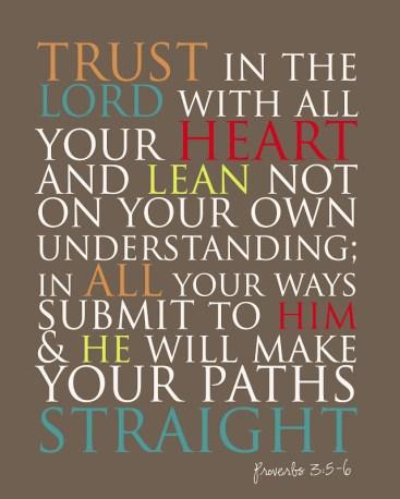 Proverbs 3.5 6