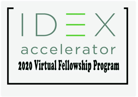 IDEX Fellowship Program January 2021