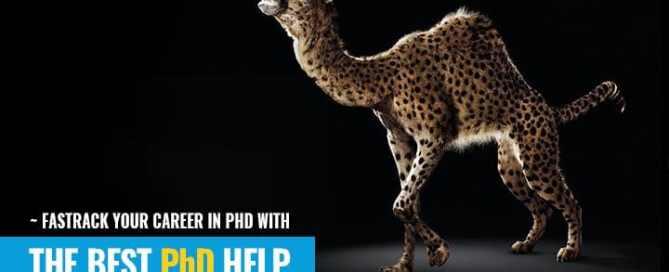 Phdizone Best Phd research Help