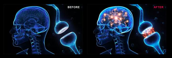Gedeon Be Focused Brain Pills