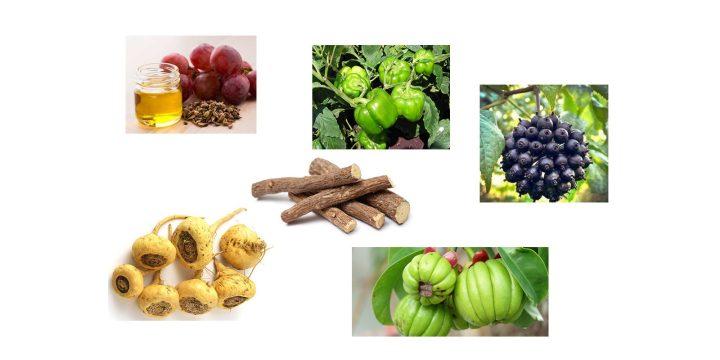 Biotox ingredients