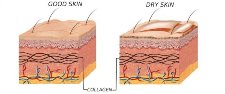 Elaj Emollient Skincare