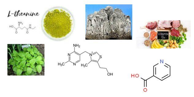 Nerv Liquid Zen ingredients