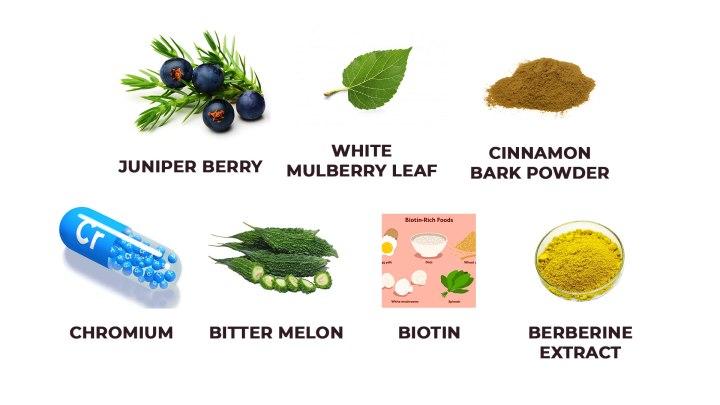 Blood Balance Advanced Formula-Ingredients