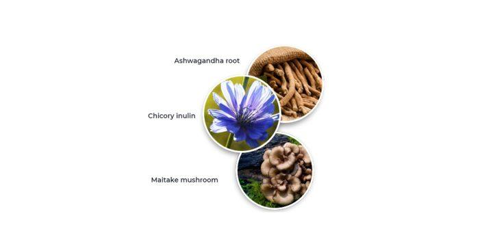 Vitality burn ingredients