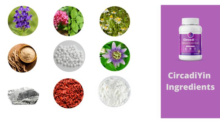 CircadiYin Ingredients