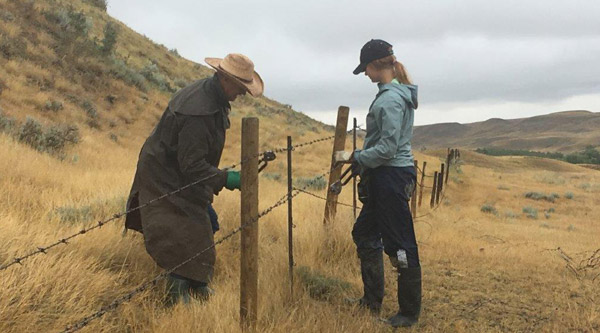 2019 Wildlife Friendly Fencing Project