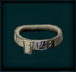 Small Pocket Belt