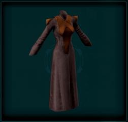 Longsleeve Gown