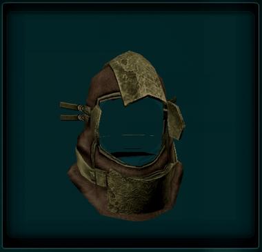 Wookiee Travellers Helm