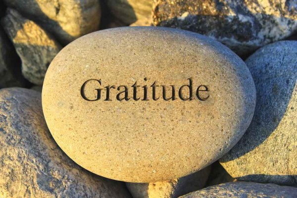 Shedding an Apologetic Spirit & Embracing a Grateful One