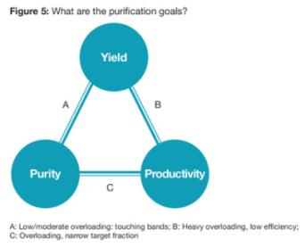 purification goals for reverse phase chromatography