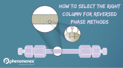 Selecting the Right Column for Your Reversed Phase Method