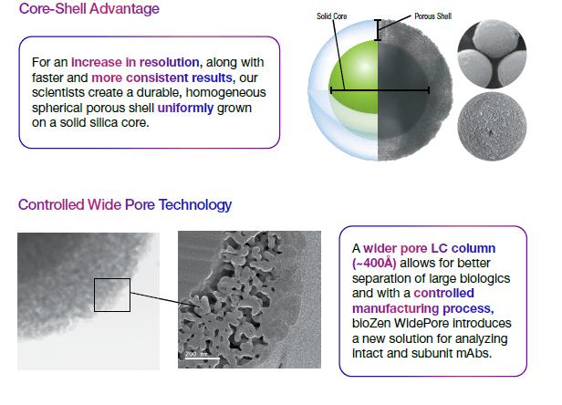 biozen wider pore column