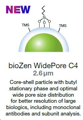 biozen WidePore particle - a wider pore column