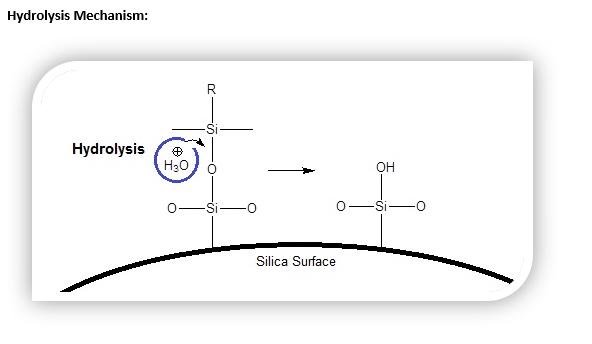 Hydrolysis Mechanism