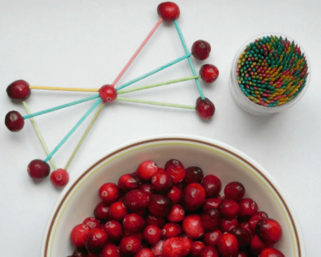 Thanksgiving Science - Cranberry Challenge