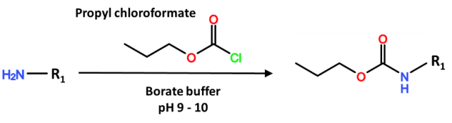 propyl chloroformate and borate buffer ratio with derivatizing reagents.