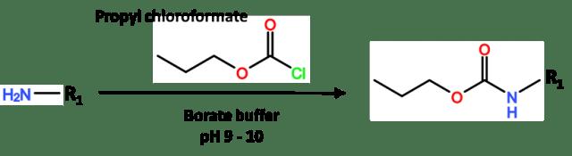Proporción de tampón de propil cloroformiato y borato con reactivos de derivatización.