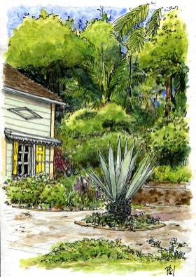 Watercolour : a creole house in a garden.