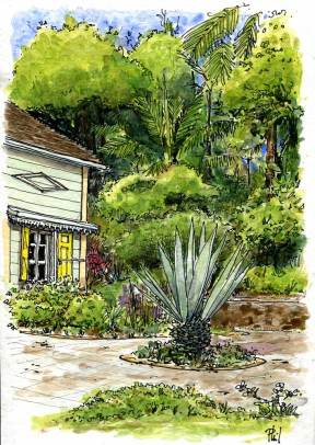 Watercolour : a creole house in a garden.
