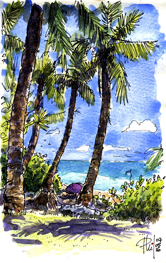 Drawing of Grande Anse beach, Reunion Island