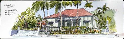 Dessin aquarellé d'une maison créole et son jardin.