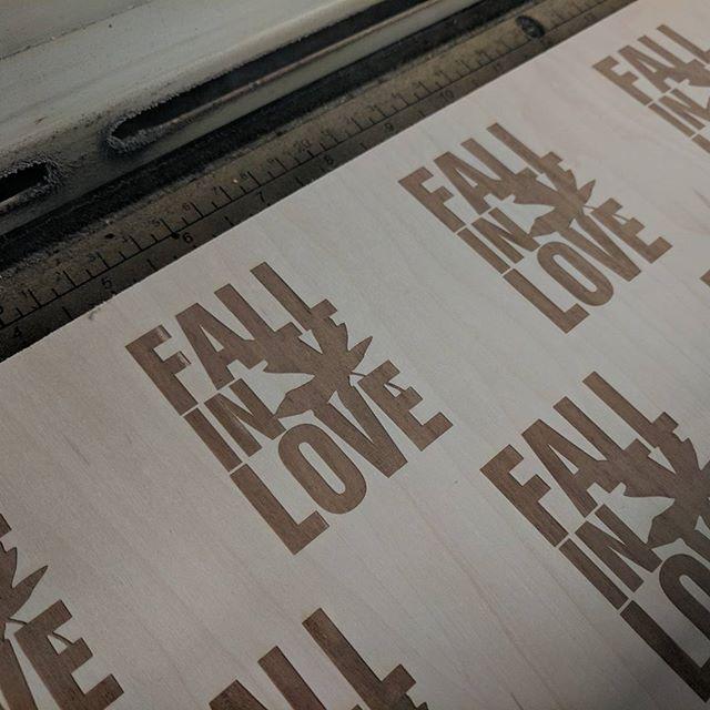 ️#fallinlove #fall  #coaster #lasercut