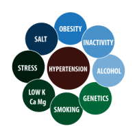 Hypertension - Homeopathic Approach