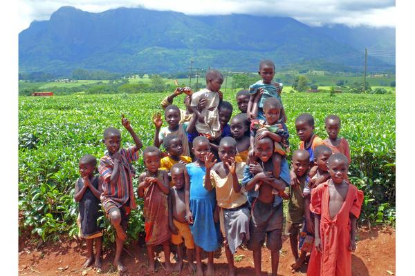 Благотворительный проект по оказанию помощи детям-сиротам в Западной Африке