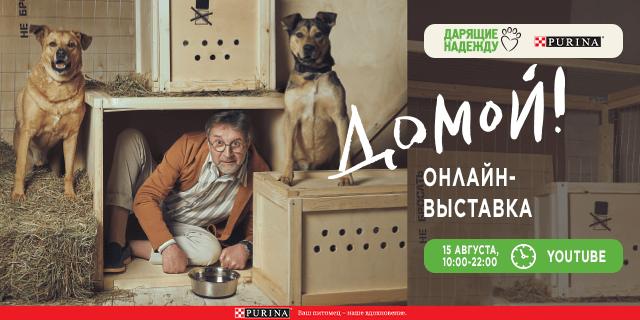 Из приюта – «ДОМОЙ!»: фонд «Дарящие надежду» и Purina  проведут онлайн-пристройство и фотовыставку в саду «Эрмитаж»