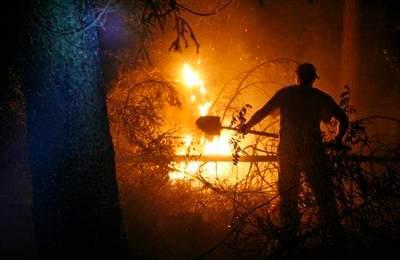 Добровольцы помогают справиться с лесными пожарами. AP Photo/Pavel Golovkin