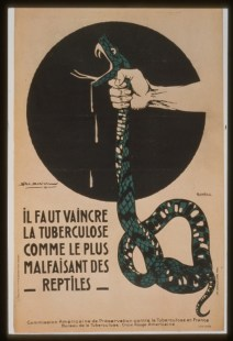 A hand squeezing the throat of a snake_TB Poster