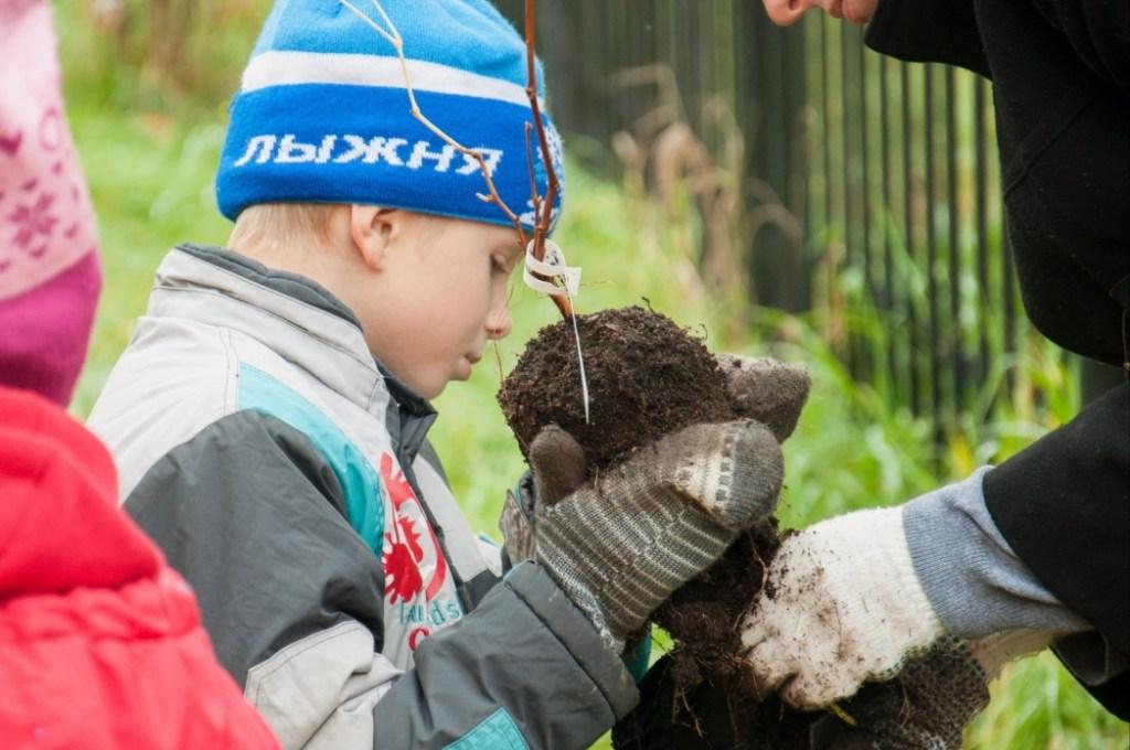 Проект «Город-сад: экологическое воспитание и профориентация детей-сирот в условиях мегаполиса»