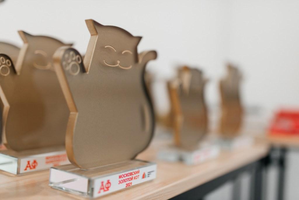 Итоги Премии по фандрайзингу «Золотой кот 2021»