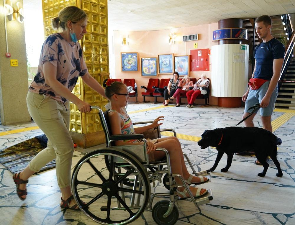В Волжском протестировали собак для участия в проекте «Волонтер – это звучит гордо!»