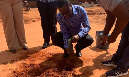 NIB management and staff plant 2000 tree seedlings in support of  Green Ghana Campaign