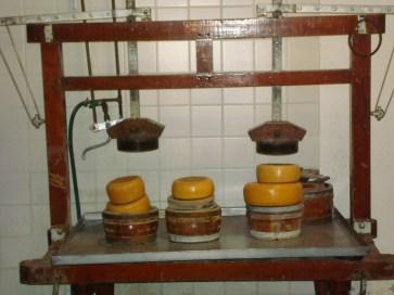 Cheese equipment