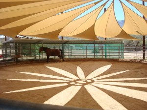 The Equine ring at Miraval