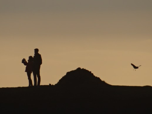 South Coast of Iceland selfie couple in shadow