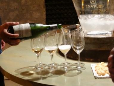 Llopart cellar tasting tour