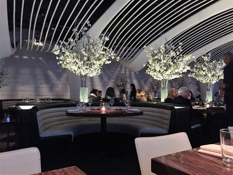 Solo Dining STK Midtown NYC