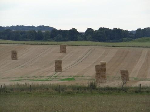 Visit Stonehenge fields of hay
