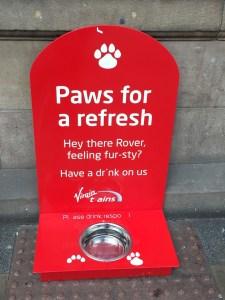 Dogs on Virgin Trains Edinburgh