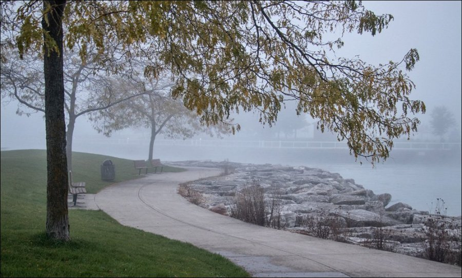 Misty Harbor Walkway