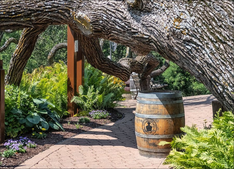 Wollersheim Winery